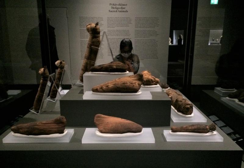 Ai Cập công bố phát hiện 59 quan tài được niêm phong hơn 2000 năm tuổi