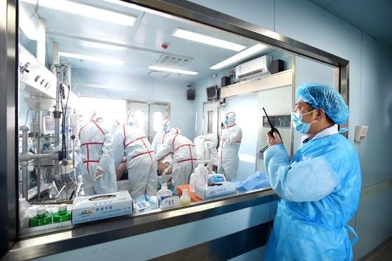 Nguy cơ đại dịch từ loại virut bí ẩn cùng họ với SARS