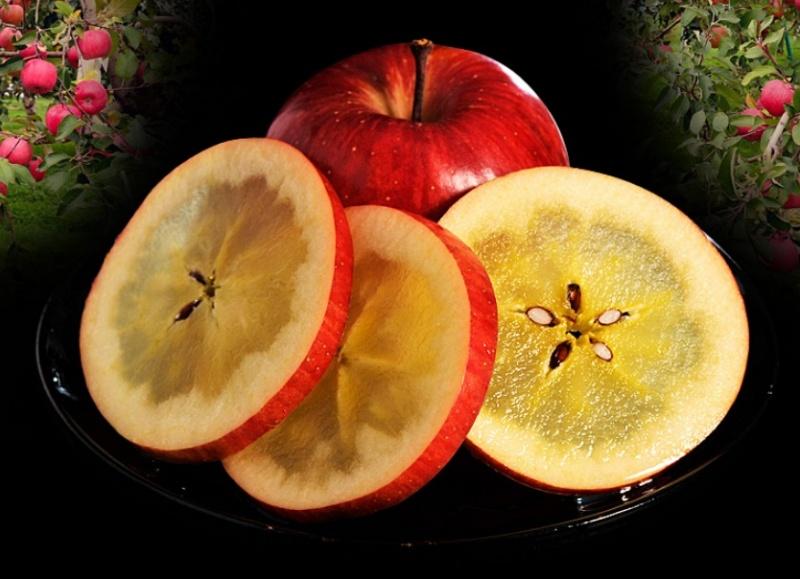 Cận cảnh quy trình trồng táo mật đắt nhất thế giới, 1 cành chỉ 1 quả