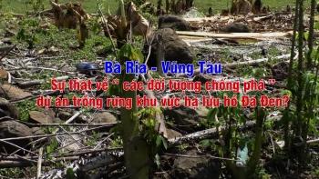 """Bà Rịa – Vũng Tàu: Sự thật về """"các đối tượng chống phá"""" dự án trồng rừng khu vực hạ lưu hồ Đá Đen?"""