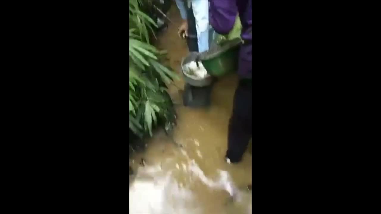 Cận cảnh vớt dầu bẩn tại suối đầu nguồn nhà máy nước sông Đà