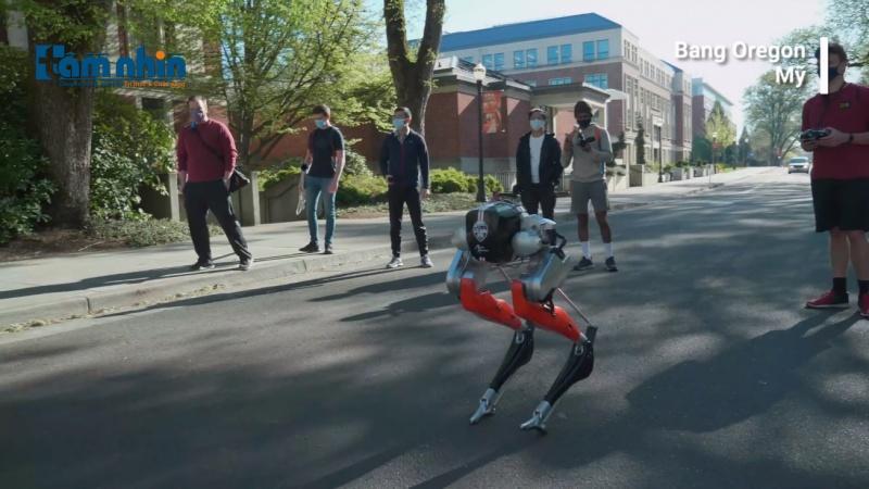 Robot chạy bộ 5 km chỉ với một lần sạc
