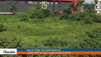 """Dự án Tháp Tài chính Quốc tế """"dậm chân tại chỗ"""" nuôi cỏ xanh mướt"""
