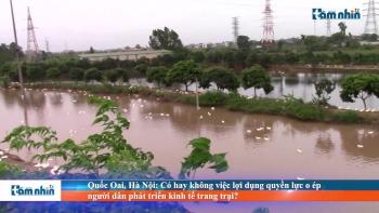 Quốc Oai, Hà Nội: Có hay không việc lợi dụng quyền lực o ép người dân phát triển kinh tế trang trại?