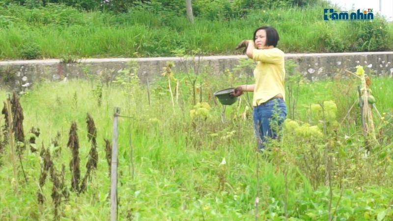 """9x startup mô hình nông nghiệp """"thuần tự nhiên"""""""