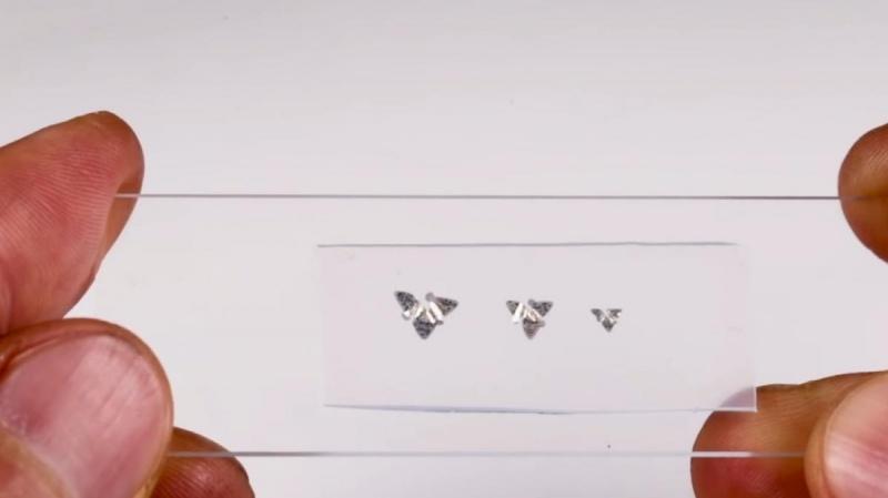 Vi mạch bay nhỏ nhất thế giới