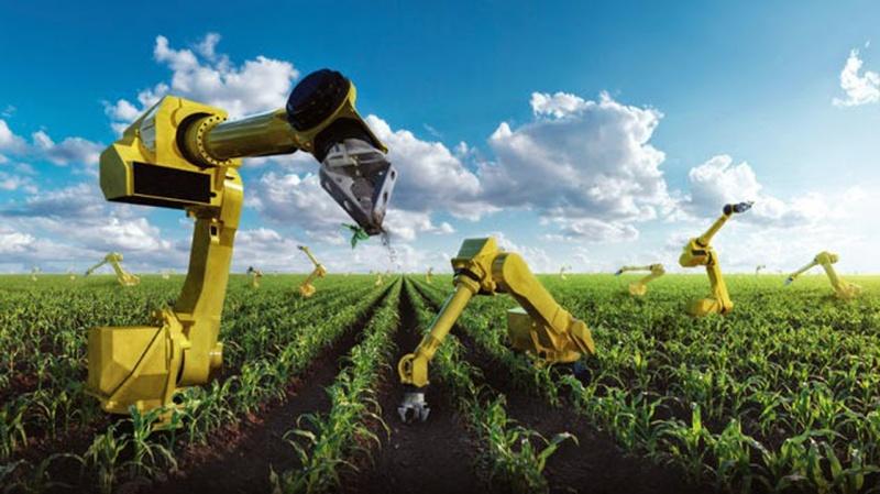 Những robot thông minh giúp cách mạng hóa nông nghiệp