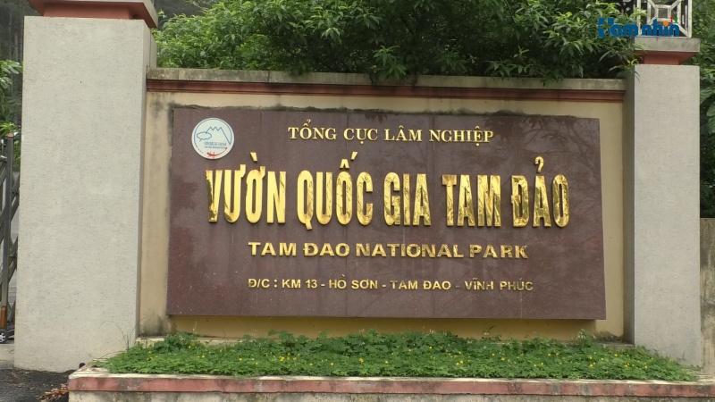 Bài 4: Vườn Quốc gia Tam Đảo còn trốn tránh đến bao giờ?