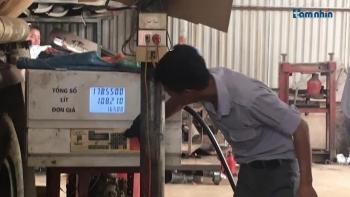 """Hà Nội: Ai """"chống lưng"""" cho hoạt động bến bãi, xăng dầu không phép của Công ty TNHH Vận tải Việt Thanh?"""